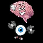 brain eye